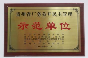 贵州省厂务公开民主管理示范单位